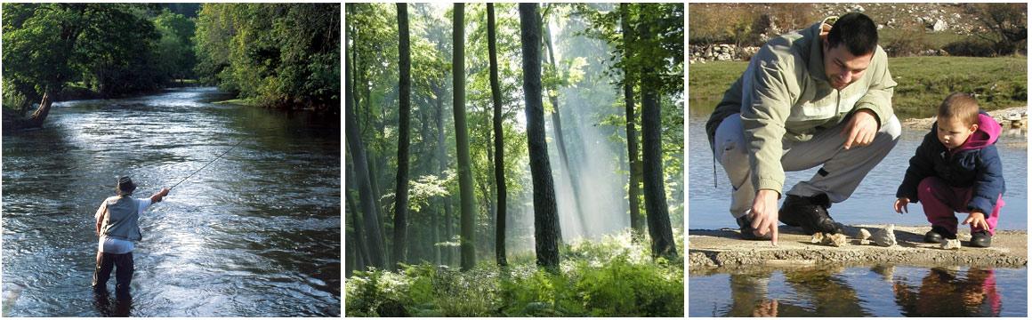 Brechfa Forest Tourism Partnership