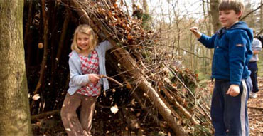 Children building a woodland den